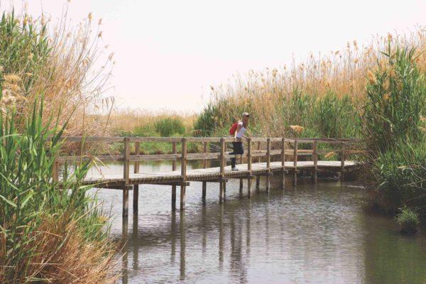 Nature Reserves Al Azraq